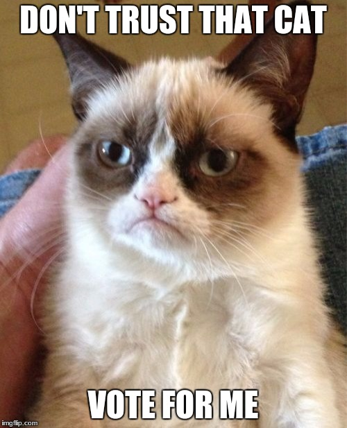Grumpy Cat Meme | DON'T TRUST THAT CAT VOTE FOR ME | image tagged in memes,grumpy cat | made w/ Imgflip meme maker