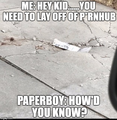 Papers are getting expensive... | ME: HEY KID......YOU NEED TO LAY OFF OF P*RNHUB PAPERBOY: HOW'D YOU KNOW? | image tagged in memes,that would be great,awkward moment sealion | made w/ Imgflip meme maker
