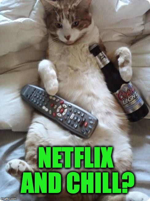 Netflix Kitty | NETFLIX AND CHILL? | image tagged in ready for sunday | made w/ Imgflip meme maker