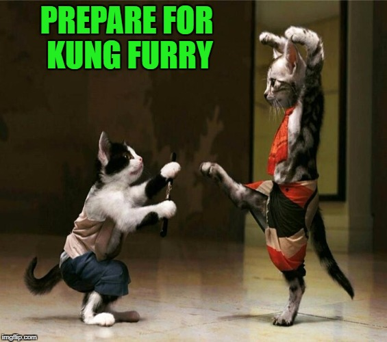 PREPARE FOR KUNG FURRY | made w/ Imgflip meme maker