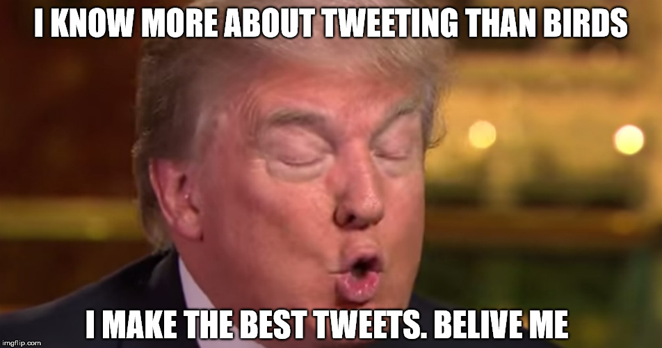 I KNOW MORE ABOUT TWEETING THAN BIRDS I MAKE THE BEST TWEETS. BELIVE ME | made w/ Imgflip meme maker