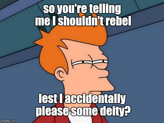 Futurama Fry Meme | so you're telling me I shouldn't rebel lest I accidentally please some deity? | image tagged in memes,futurama fry | made w/ Imgflip meme maker