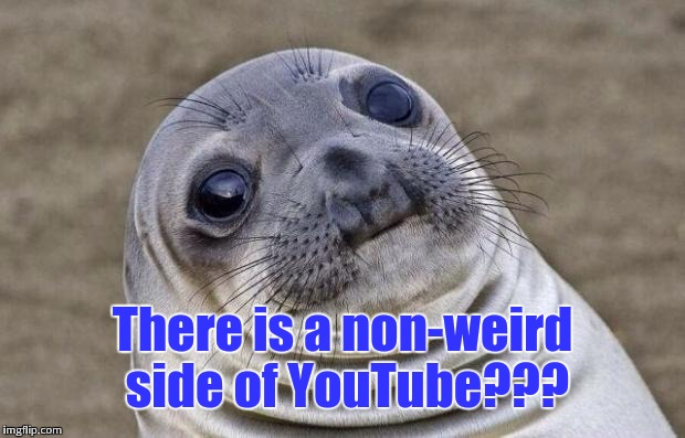 Awkward Moment Sealion Meme | There is a non-weird side of YouTube??? | image tagged in memes,awkward moment sealion | made w/ Imgflip meme maker