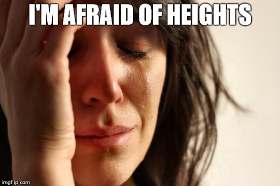 First World Problems Meme | I'M AFRAID OF HEIGHTS | image tagged in memes,first world problems | made w/ Imgflip meme maker