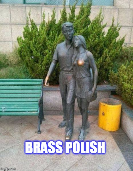brass polish | BRASS POLISH | image tagged in statues | made w/ Imgflip meme maker