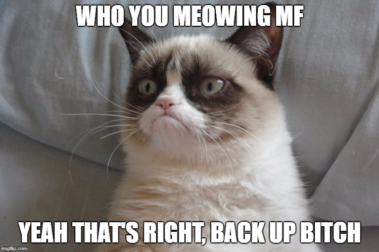 WHO YOU MEOWING MF YEAH THAT'S RIGHT, BACK UP B**CH | image tagged in http//wwwzastavkicom/pictures/originals/2013/animals___cats_g | made w/ Imgflip meme maker