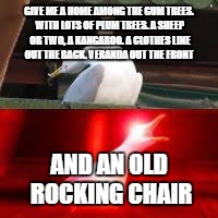 GIVE ME A HOME AMONG THE GUM TREES. WITH LOTS OF PLUM TREES. A SHEEP OR TWO, A KANGAROO. A CLOTHES LINE OUT THE BACK. VERANDA OUT THE FRONT; AND AN OLD ROCKING CHAIR | image tagged in blank inhaling seagull | made w/ Imgflip meme maker