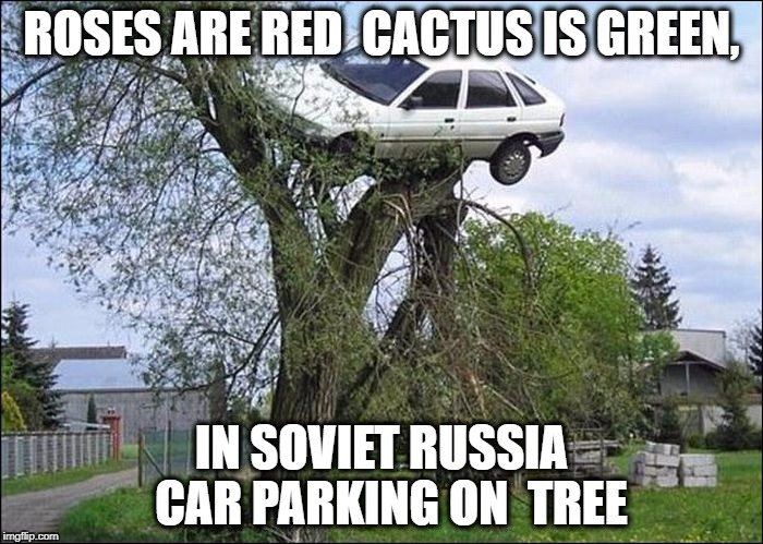 ROSES ARE RED  CACTUS IS GREEN, IN SOVIET RUSSIA  CAR PARKING ON  TREE | image tagged in car,tree,secure parking,roses are red,soviet russia,flying | made w/ Imgflip meme maker