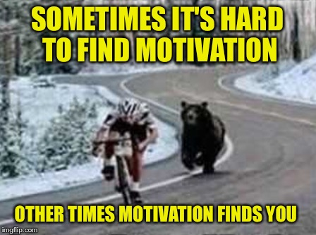 Motivated cyclist | SOMETIMES IT'S HARD TO FIND MOTIVATION OTHER TIMES MOTIVATION FINDS YOU | image tagged in motivated,cyclist,bear,snow,mountain | made w/ Imgflip meme maker