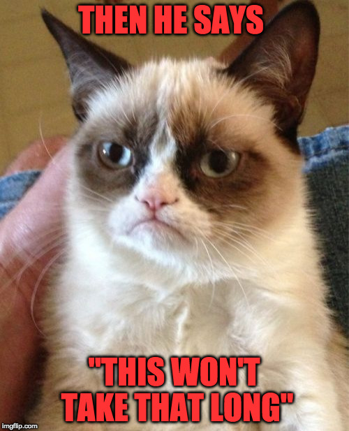 "Grumpy Cat Meme | THEN HE SAYS ""THIS WON'T TAKE THAT LONG"" 
