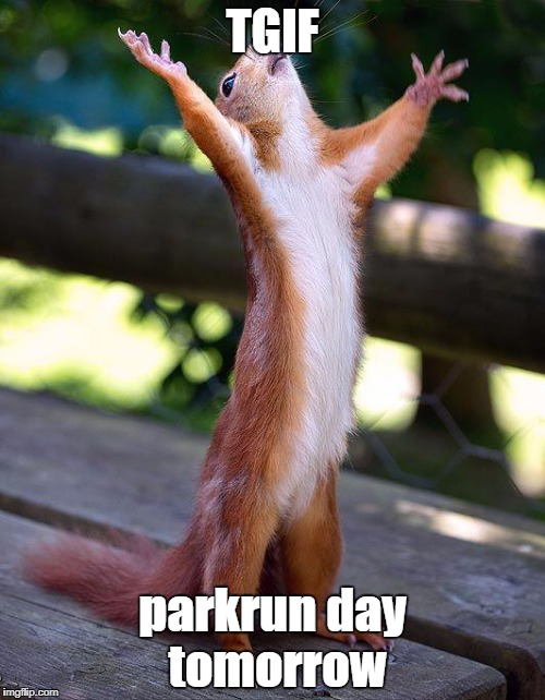 Finished! | TGIF parkrun day tomorrow | image tagged in finished,parkrun | made w/ Imgflip meme maker