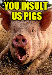 YOU INSULT US PIGS | made w/ Imgflip meme maker