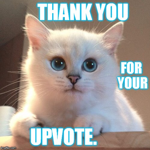 THANK YOU UPVOTE. FOR YOUR | made w/ Imgflip meme maker