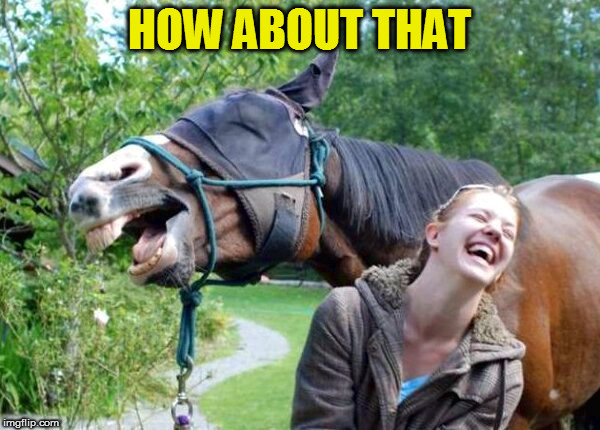 Laughing Horse | HOW ABOUT THAT | image tagged in laughing horse | made w/ Imgflip meme maker