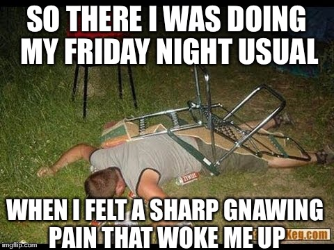 SO THERE I WAS DOING MY FRIDAY NIGHT USUAL WHEN I FELT A SHARP GNAWING PAIN THAT WOKE ME UP | made w/ Imgflip meme maker
