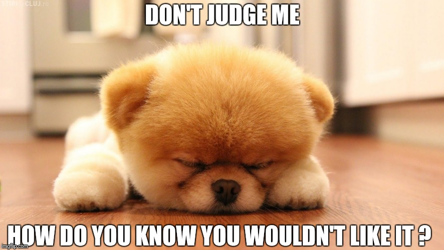 Sleeping dog | DON'T JUDGE ME HOW DO YOU KNOW YOU WOULDN'T LIKE IT ? | image tagged in sleeping dog | made w/ Imgflip meme maker