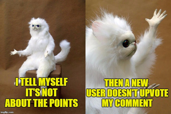 It's not really about the points, but it's about the points. | I TELL MYSELF IT'S NOT ABOUT THE POINTS THEN A NEW USER DOESN'T UPVOTE MY COMMENT | image tagged in memes,persian cat room guardian,imgflip | made w/ Imgflip meme maker