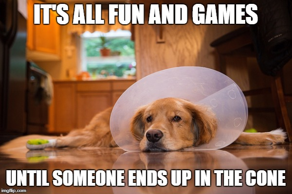 IT'S ALL FUN AND GAMES UNTIL SOMEONE ENDS UP IN THE CONE | made w/ Imgflip meme maker