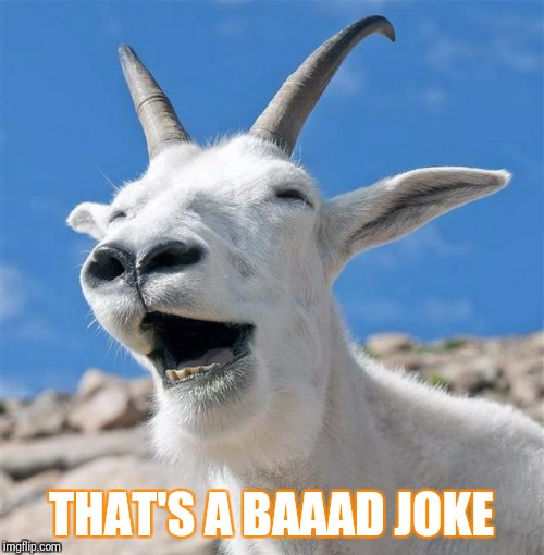 Laughing Goat | THAT'S A BAAAD JOKE | image tagged in memes,laughing goat | made w/ Imgflip meme maker