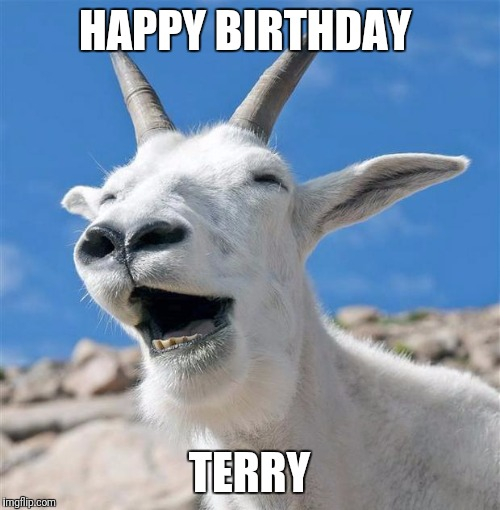 Laughing Goat | HAPPY BIRTHDAY TERRY | image tagged in memes,laughing goat | made w/ Imgflip meme maker