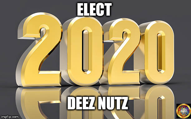 ELECT DEEZ NUTZ | image tagged in usa,elections,politics,election 2020 | made w/ Imgflip meme maker