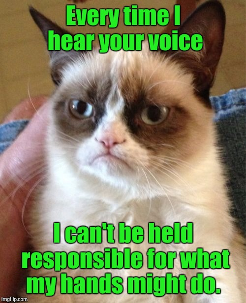 Grumpy Cat Meme | Every time I hear your voice I can't be held responsible for what my hands might do. | image tagged in memes,grumpy cat | made w/ Imgflip meme maker