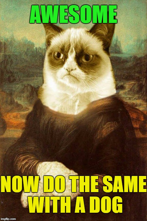 Grumpy Cat Mona Lisa | AWESOME NOW DO THE SAME WITH A DOG | image tagged in grumpy cat 1 | made w/ Imgflip meme maker