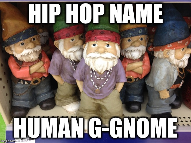 Yeah Boy...! |  HIP HOP NAME; HUMAN G-GNOME | image tagged in gnome,hip hop,memes,funny | made w/ Imgflip meme maker