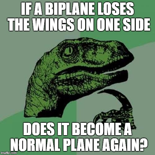 Philosoraptor Meme | IF A BIPLANE LOSES THE WINGS ON ONE SIDE DOES IT BECOME A NORMAL PLANE AGAIN? | image tagged in memes,philosoraptor | made w/ Imgflip meme maker
