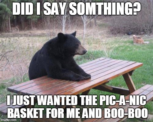 I Just Wanted the Pic-a-nic Basket | DID I SAY SOMTHING? I JUST WANTED THE PIC-A-NIC BASKET FOR ME AND BOO-BOO | image tagged in memes,bad luck bear,yogi bear | made w/ Imgflip meme maker