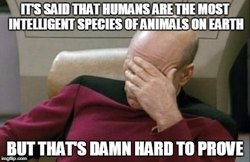 Captain Picard Facepalm Meme | IT'S SAID THAT HUMANS ARE THE MOST INTELLIGENT SPECIES OF ANIMALS ON EARTH BUT THAT'S DAMN HARD TO PROVE | image tagged in memes,captain picard facepalm | made w/ Imgflip meme maker
