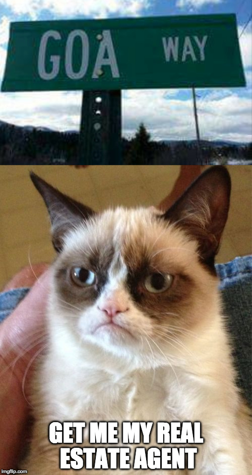 Grumpy cat retires. | GET ME MY REAL ESTATE AGENT | image tagged in grumpy cat,retire,iwanttobebaconcom | made w/ Imgflip meme maker