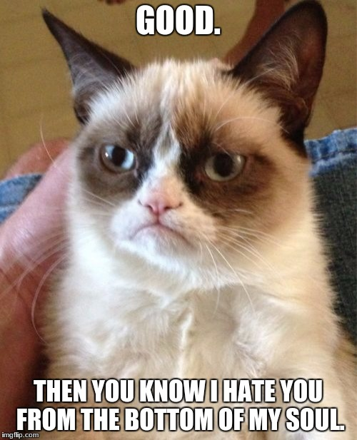 Grumpy Cat Meme | GOOD. THEN YOU KNOW I HATE YOU FROM THE BOTTOM OF MY SOUL. | image tagged in memes,grumpy cat | made w/ Imgflip meme maker