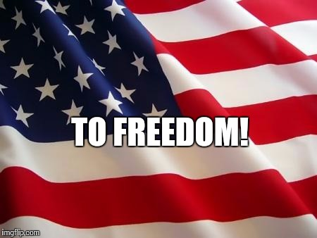 American flag | TO FREEDOM! | image tagged in american flag | made w/ Imgflip meme maker