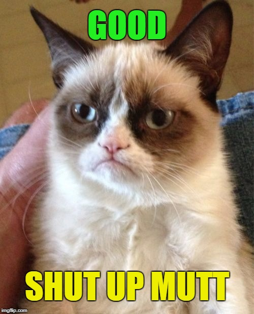 Grumpy Cat Meme | GOOD SHUT UP MUTT | image tagged in memes,grumpy cat | made w/ Imgflip meme maker