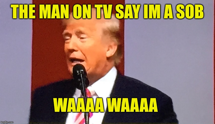 I never knew there were so many sons of bitches in the league. | THE MAN ON TV SAY IM A SOB WAAAA WAAAA | image tagged in trump talk,nfl babies,bitch ass kneelers,disgrace to the flag,funny memes | made w/ Imgflip meme maker