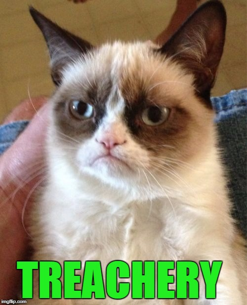 Grumpy Cat Meme | TREACHERY | image tagged in memes,grumpy cat | made w/ Imgflip meme maker
