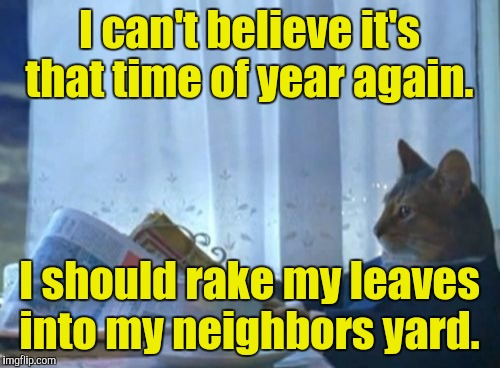 I Should Buy A Boat Cat Meme | I can't believe it's that time of year again. I should rake my leaves into my neighbors yard. | image tagged in memes,i should buy a boat cat | made w/ Imgflip meme maker