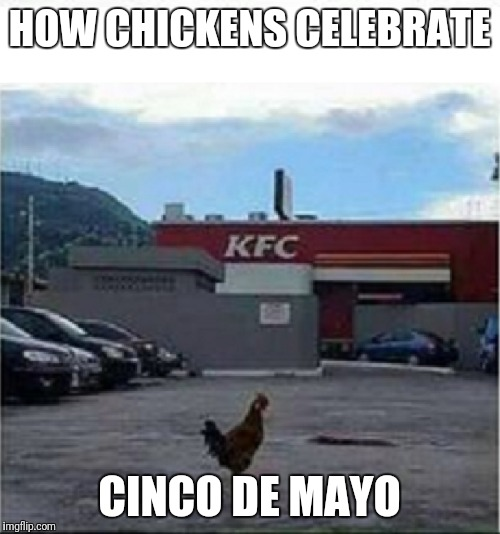 KFC Chicken | HOW CHICKENS CELEBRATE CINCO DE MAYO | image tagged in kfc chicken | made w/ Imgflip meme maker