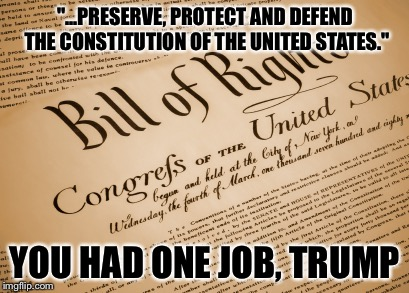 """...PRESERVE, PROTECT AND DEFEND THE CONSTITUTION OF THE UNITED STATES."" YOU HAD ONE JOB, TRUMP 