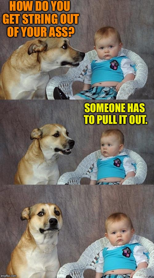 Dad Joke Dog Meme | HOW DO YOU GET STRING OUT OF YOUR ASS? SOMEONE HAS TO PULL IT OUT. | image tagged in memes,dad joke dog | made w/ Imgflip meme maker