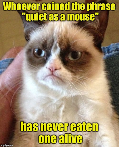 "Grumpy Cat Meme | Whoever coined the phrase ""quiet as a mouse"" has never eaten one alive 