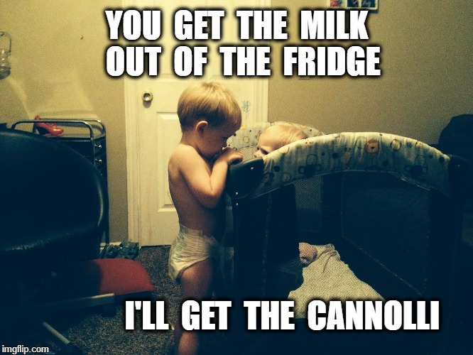 Plotting Babies | YOU  GET  THE  MILK  OUT  OF  THE  FRIDGE I'LL  GET  THE  CANNOLLI | image tagged in plotting babies | made w/ Imgflip meme maker