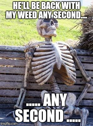 Waiting Skeleton Meme | HE'LL BE BACK WITH MY WEED ANY SECOND.... ..... ANY SECOND ..... | image tagged in memes,waiting skeleton | made w/ Imgflip meme maker