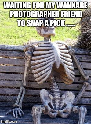 Waiting Skeleton Meme | WAITING FOR MY WANNABE PHOTOGRAPHER FRIEND TO SNAP A PICK ...... | image tagged in memes,waiting skeleton | made w/ Imgflip meme maker