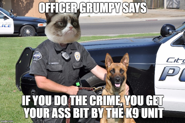 OFFICER GRUMPY SAYS IF YOU DO THE CRIME, YOU GET YOUR ASS BIT BY THE K9 UNIT | made w/ Imgflip meme maker