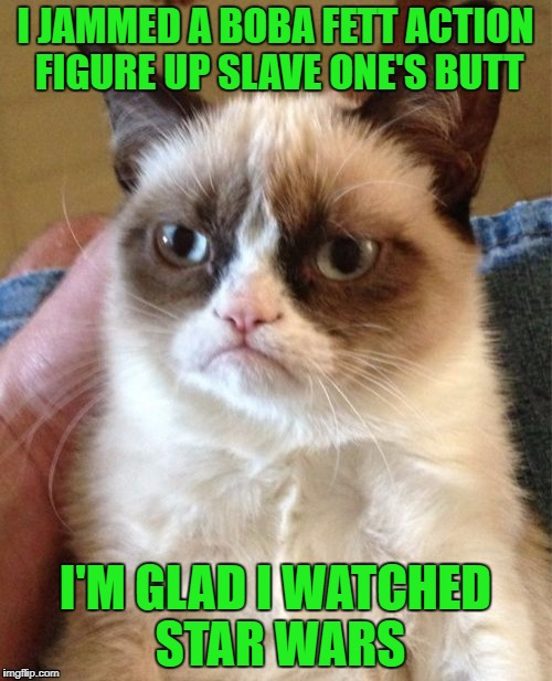Grumpy Cat Meme | I JAMMED A BOBA FETT ACTION FIGURE UP SLAVE ONE'S BUTT I'M GLAD I WATCHED STAR WARS | image tagged in memes,grumpy cat | made w/ Imgflip meme maker