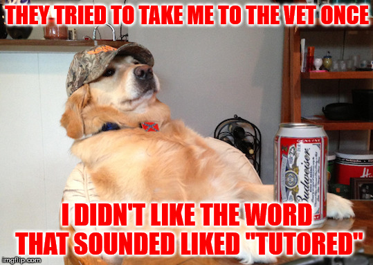 "THEY TRIED TO TAKE ME TO THE VET ONCE I DIDN'T LIKE THE WORD THAT SOUNDED LIKED ""TUTORED"" 