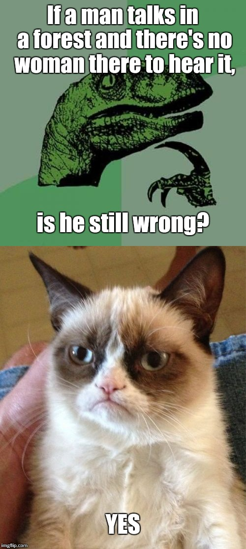 The only time Grumpy Cat ever said yes | If a man talks in a forest and there's no woman there to hear it, is he still wrong? YES | image tagged in philosoraptor,grumpy cat,wrong | made w/ Imgflip meme maker
