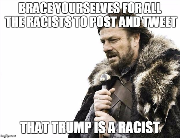 Brace Yourselves X is Coming Meme | BRACE YOURSELVES FOR ALL THE RACISTS TO POST AND TWEET THAT TRUMP IS A RACIST | image tagged in memes,brace yourselves x is coming | made w/ Imgflip meme maker